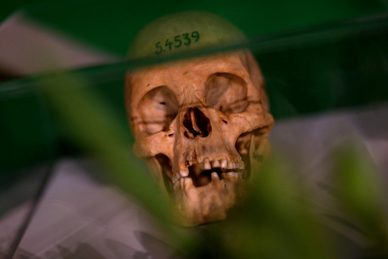 Human skulls of the Herero and Nama people displayed in Berlin [Reuters]