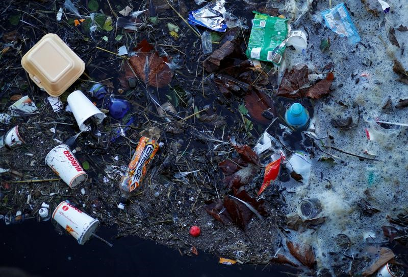 Plastic pollution can be harmful to wildlife and human well-being/Reuters.
